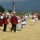 Die LandFrauen Markgröningen nehmen am Schäferlauf teil.