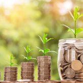 Buchführung und Steuerrecht